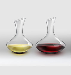 decanters with wine vector image