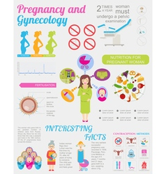 Gynecology and pregnancy infographic template Vector Image