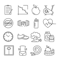 Healthy lifestyle and diet of modern linear icons vector