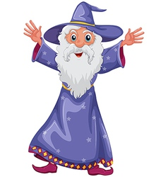 old wizard vector image vector image