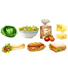 Set of different kinds of food vector image vector image