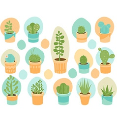 Succulent mix vector