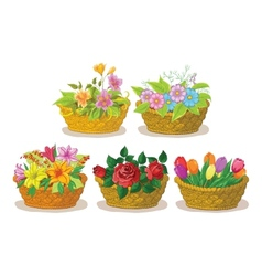 Baskets with flowers set vector