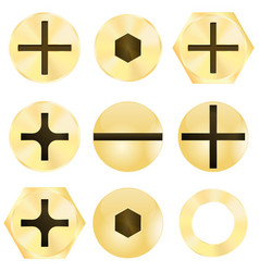 bronze screw head vector image vector image