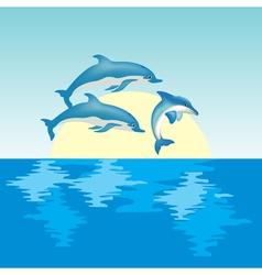 dolphin on sunrise vector image