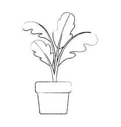 Monochrome blurred silhouette of beet plant in vector