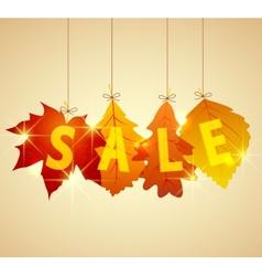 sale autumn vector image vector image