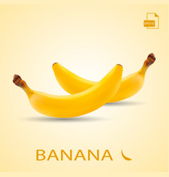 set of two fresh bananas isolated on a background vector image vector image
