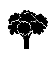 Silhouette monochrome with broccoli vegetable vector