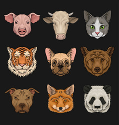 wild and domestic animals set heads of pig cow vector image