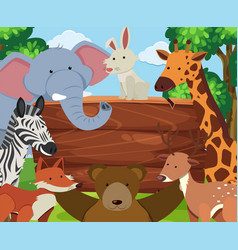 wild animals around wooden board vector image