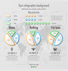 Infographic for gym vector