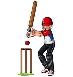 Man athlete playing cricket vector