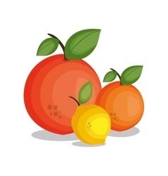 Icon lemon orange design vector