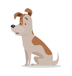 Jack russell terrier dog breed isolated on white vector