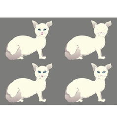 White cat with blue eyes vector