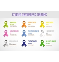 Colorful awareness ribbons isolated over white vector