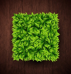 Natural background with wooden board and square vector