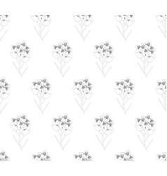 vanda miss joaquim orchid seamless on white vector image