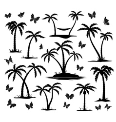 silhouettes of palm trees vector image