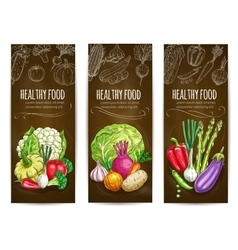Healthy vegetarian vegetables sketch banners vector