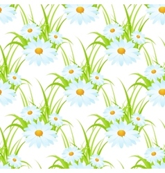 white camomile seamless vector image