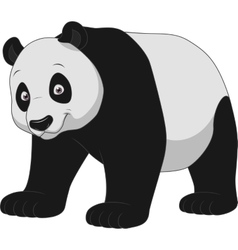 Adult funny panda vector image vector image