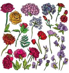 Flowers set 380 vector