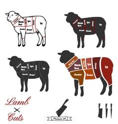 Lamb cuts vector image vector image