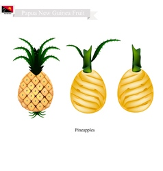 Pineapple a famous fruit in papua new guinea vector
