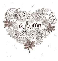 Sketch patterned autumn leaves in a heart shape vector