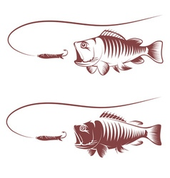 Sea bass and lure template vector