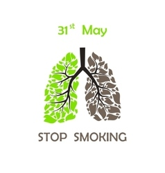 Stop smoking background vector image