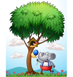An elephant under the tree vector image vector image