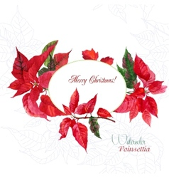 Background with red christmas poinsettia-02 vector