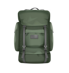 Big travel backpack vector
