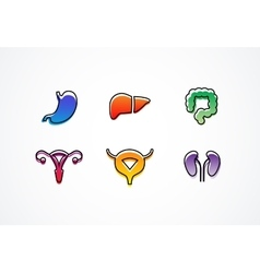 White human internal organs icons vector