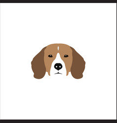 beagle head isolated on white background vector image