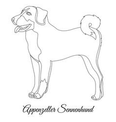 Appenzeller sennenhund dog outline vector