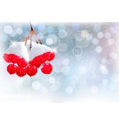 Holiday background with Christmas branch with red vector image