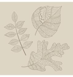 Leaf doodle vector image vector image