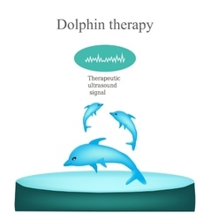 Dolphin therapy isolated on vector
