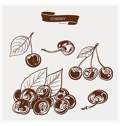 Cherry drawing set vector image vector image