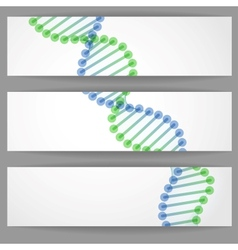 DNA Molecule Background vector image