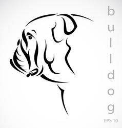 dog bulldog vector image vector image