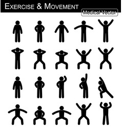 Exercise and movement vector