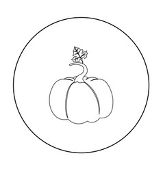 pumpkin icon outline single plant icon from the vector image