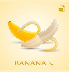 Single fresh pilled banana fruit isolated on a vector
