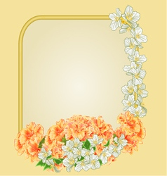 Frame with yellow hibiscus and jasmine vector image vector image