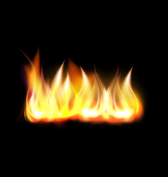 realistic fire flame element vector image